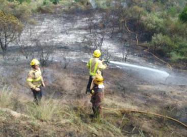 Un incendio en Mataró quema 2.872 metros cuadrados de monte