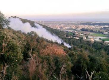 Un incendio forestal quema 400 metros cuadrados de monte en Palafolls