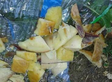 Vecinos de Mataró denuncian la colocación de trozos de jamón con alfileres destinados a perros