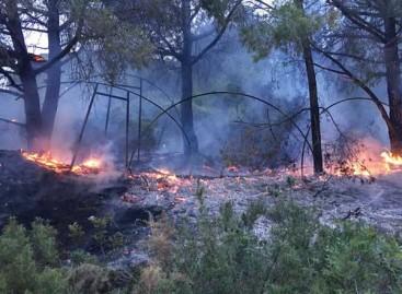 Un incendio en un invernadero quema 500 metros cuadrados de monte en Malgrat de Mar