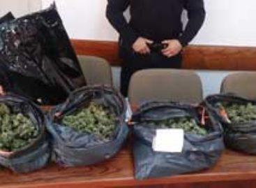 Dos vecinos de Argentona detenidos en Dosrius por tráfico de estupefacientes