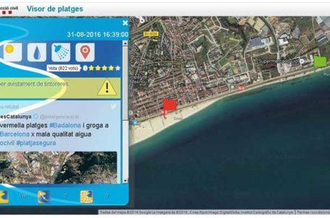 Cierran al baño la playa de Ocata, en El Masnou, por la presencia de tres tintoreras