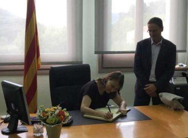 La Generalitat destinará 100.000 euros para luchar contra las amenazas al pino del Maresme