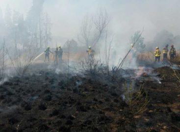 Un incendio quema 4 hectáreas de vegetación en Pineda de Mar