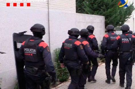 Mossos y Agencia Tributaria desarticulan una banda que tenía una plantación de marihuana en Premià de Dalt