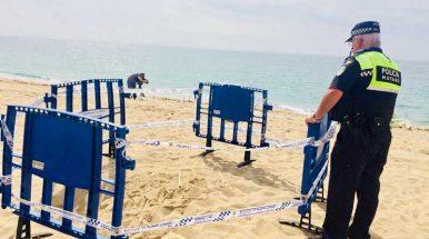 Sorpresa en la playa de Sant Simó de Mataró donde una tortuga ha puesto sus huevos