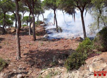 Nueve unidades de bomberos trabajan en un incendio forestal en Cabrils