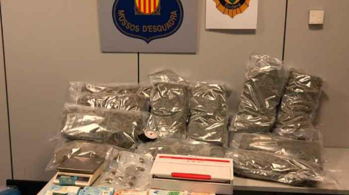 Una denuncia por maltrato animal saca a la luz una plantación ilegal de marihuana en Tordera